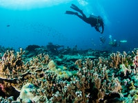 Holiday in Scuba Diving Phuket activity in Thailand